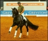 The Ultimate Masterclass - with Steffan Peters