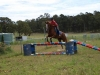 Hoc's Delta- amazing jumping talent