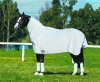 The NEW Eurohunter Flag Rug